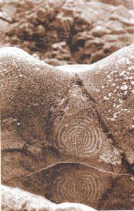 Labyrinth Witchhazel Wildwood WM03