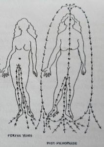 Susun Weed: energía kundalini en la menopausia