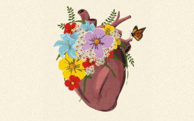 12 consejos de mujeres que emprenden con el corazón